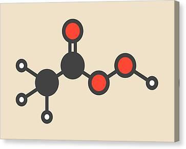 Peracetic Acid Molecule Canvas Print by Molekuul