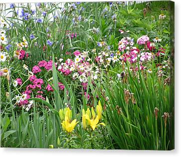 Canvas Print featuring the photograph Perennial Garden 2 by Margaret Newcomb