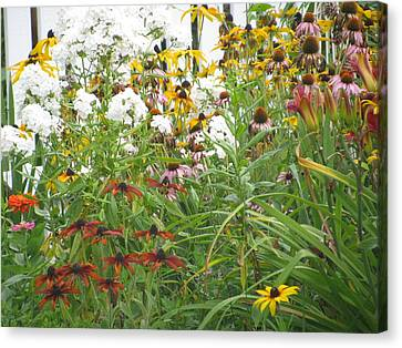 Canvas Print featuring the photograph Perennial Garden 3 by Margaret Newcomb