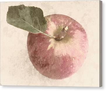 Canvas Print featuring the photograph Perfect Apple by Photographic Arts And Design Studio