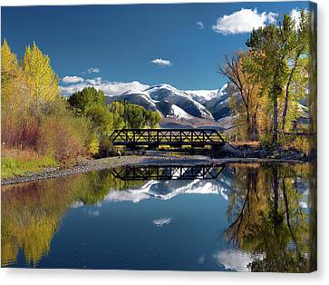 Cottonwood Canvas Print - Perfect Autumn Day by Leland D Howard