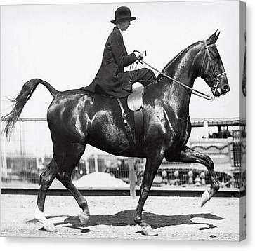 Perfect Equine Form Canvas Print by Underwood Archives