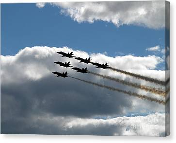 Perfect Formation Canvas Print