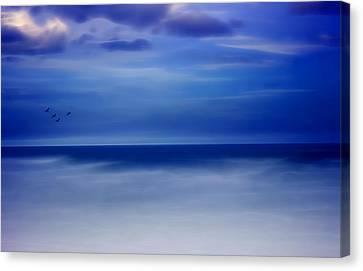 Perfect Harmony Canvas Print by Ellen Heaverlo