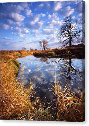 Perfect Morning Canvas Print by Ray Mathis