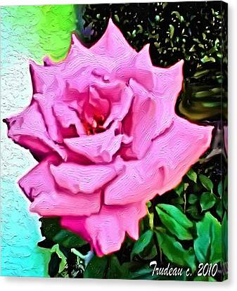 Culinary Canvas Print - Perfect Rose by Tommi Trudeau