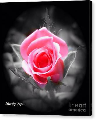 Perfect Rosebud In Black Canvas Print