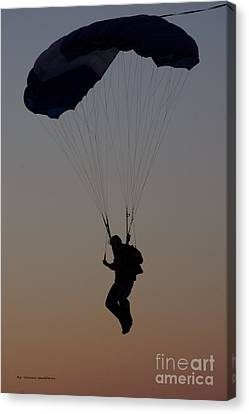 Perfect Sunset Landing Canvas Print by Tannis  Baldwin