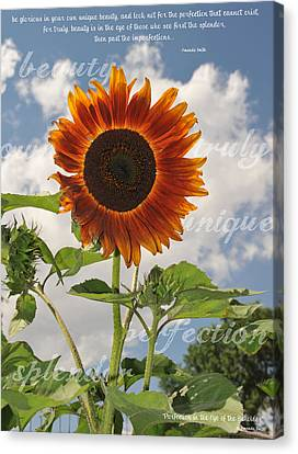 Perfection In The Eye Of The Beholder Canvas Print