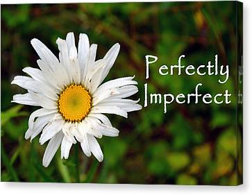 Perfectly Imperfect Daisy Flower Canvas Print