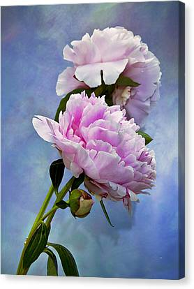 Perfume And Powdery Pastels Canvas Print by Theresa Tahara