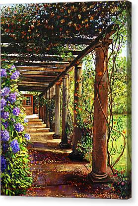 Pergola Walkway Canvas Print by David Lloyd Glover
