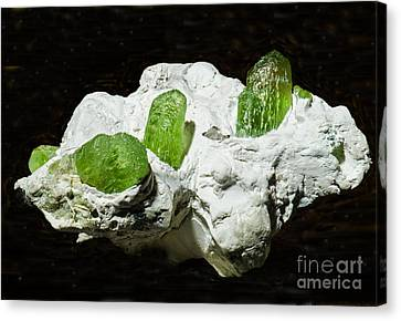 Peridot Crystals Canvas Print