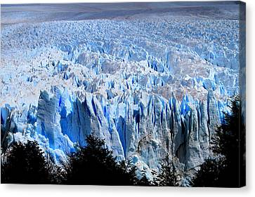Perito Moreno Glacier Canvas Print by Arie Arik Chen