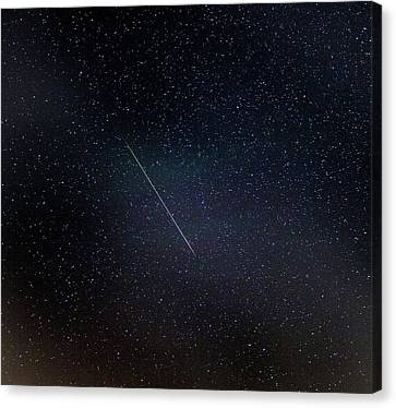 Perseid Meteor Trail Canvas Print by Chris Madeley