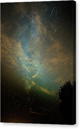 Perseid Meteor Trail In The Night Sky Canvas Print by Chris Madeley