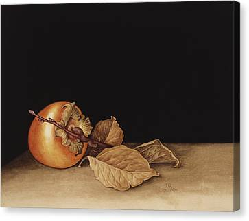 Persimmon Canvas Print by Jenny Barron
