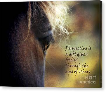 Perspective Is A Gift Canvas Print by Karen Lewis
