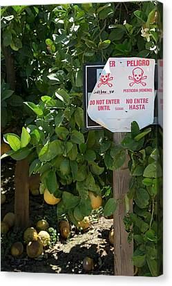 Pesticide Warning Sign Canvas Print by Jim West
