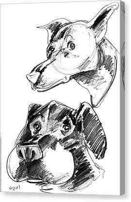 Pet Sketches 5 Canvas Print by Big Mike Roate