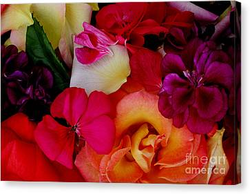 Canvas Print featuring the photograph Petal River by Jeanette French