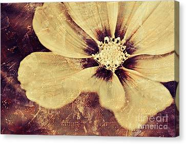 Petaline - T37d03a3 Canvas Print by Variance Collections