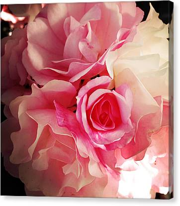 Petals Canvas Print by Les Cunliffe