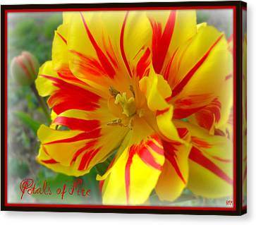 Canvas Print featuring the photograph Petals Of Fire by Heidi Manly