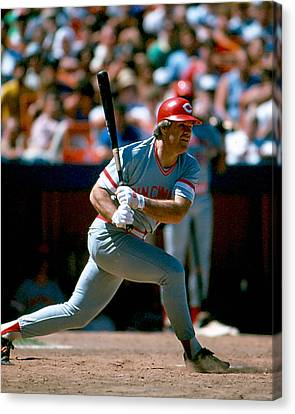 Pete Rose Connecting On Pitch Canvas Print