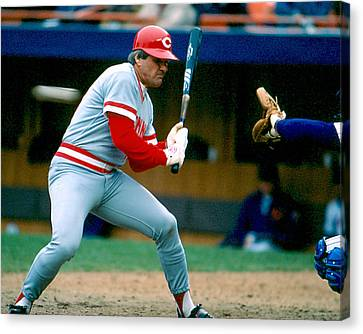 Pete Rose Taking Pitch Canvas Print