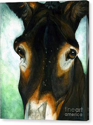 Pete The Mule Canvas Print by Janine Riley