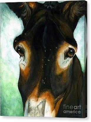 Pete The Mule Canvas Print