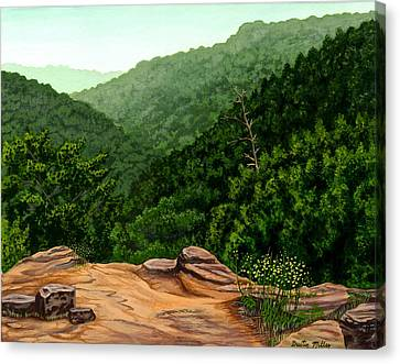 Petit Jean Mountains Canvas Print by Dustin Miller