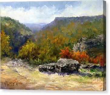 Petit Jean View From Mather Lodge Canvas Print by Virginia Potter