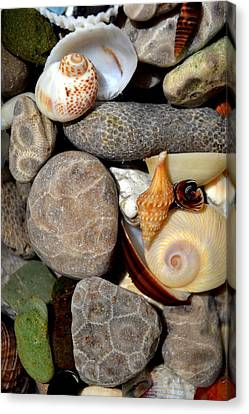 Petoskey Stones Ll Canvas Print by Michelle Calkins