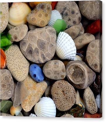 Petoskey Stones V Canvas Print by Michelle Calkins