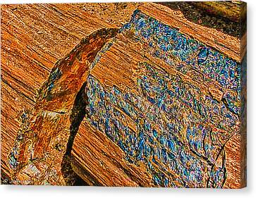 Petrified Forest Logs Canvas Print by Bob and Nadine Johnston