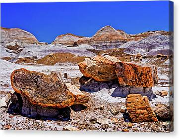 Canvas Print featuring the photograph Petrified Forest - Painted Desert by Bob and Nadine Johnston