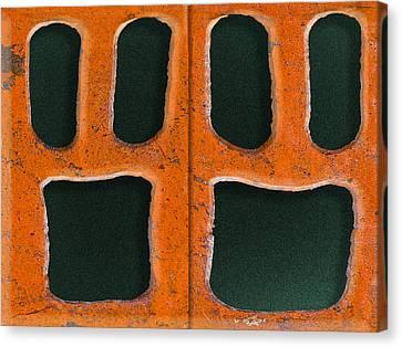 Petrified Canvas Print by Paul Wear