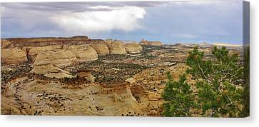 Petrified Sand Dunes Canvas Print by Bruce Bley