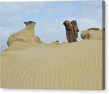 Petrified Sand Canvas Print by Peter-hugo Mcclure