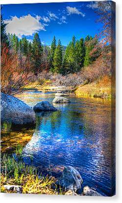 Canvas Print featuring the photograph Pettengill Creek by Kevin Bone
