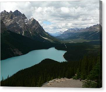 Canvas Print featuring the photograph Peyote Lake In Banff Alberta by Laurel Best