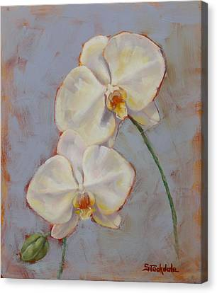 Canvas Print featuring the painting Phalaenopsis Orchid by Margaret Stockdale