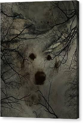 Phantom Dog Canvas Print by Shirley Sirois