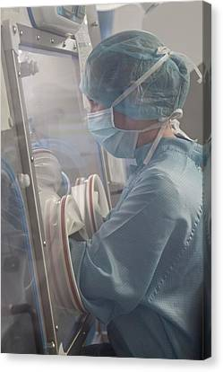 Pharmacist Preparing Chemotherapy Drugs Canvas Print