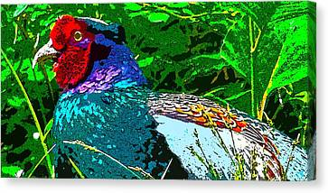 Pheasant Digiartwork Canvas Print by Tim Ernst