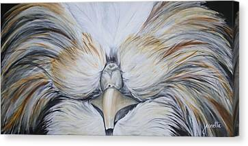 Phil Canvas Print