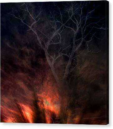 Phoenix One Canvas Print