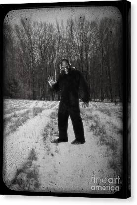 Hallmark Canvas Print - Photographic Evidence Of Big Foot by Edward Fielding